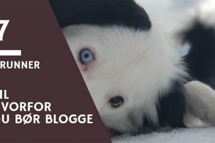 Grunner til hvorfor starte blogg
