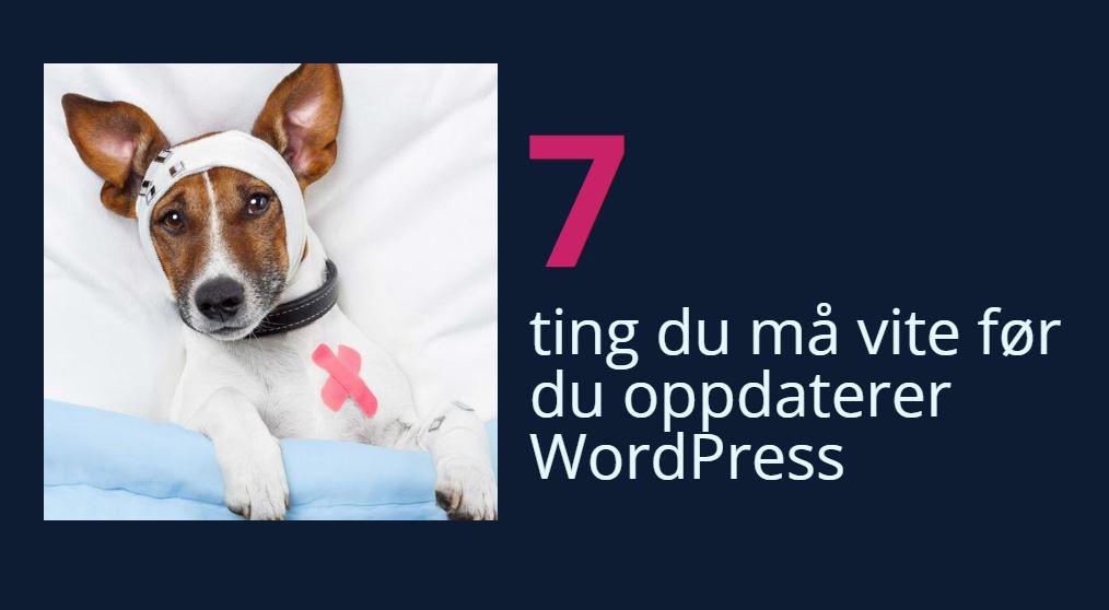 7 ting du må vite før du oppdaterer WordPress